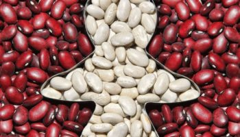 В чём отличие белой и красной фасоли для организма