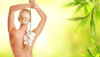 Арматура красивого тела — позвоночник. 7 решений его здоровья.