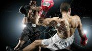 Искусство боя. ММА и бокс делят первенство.