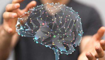 5 полезных привычек, которые восстанавливают клетки мозга