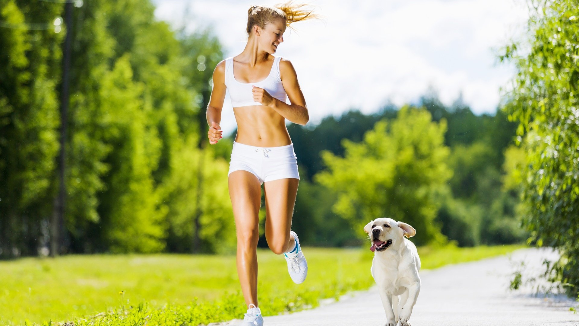 Как правильно гулять с собакой на улице
