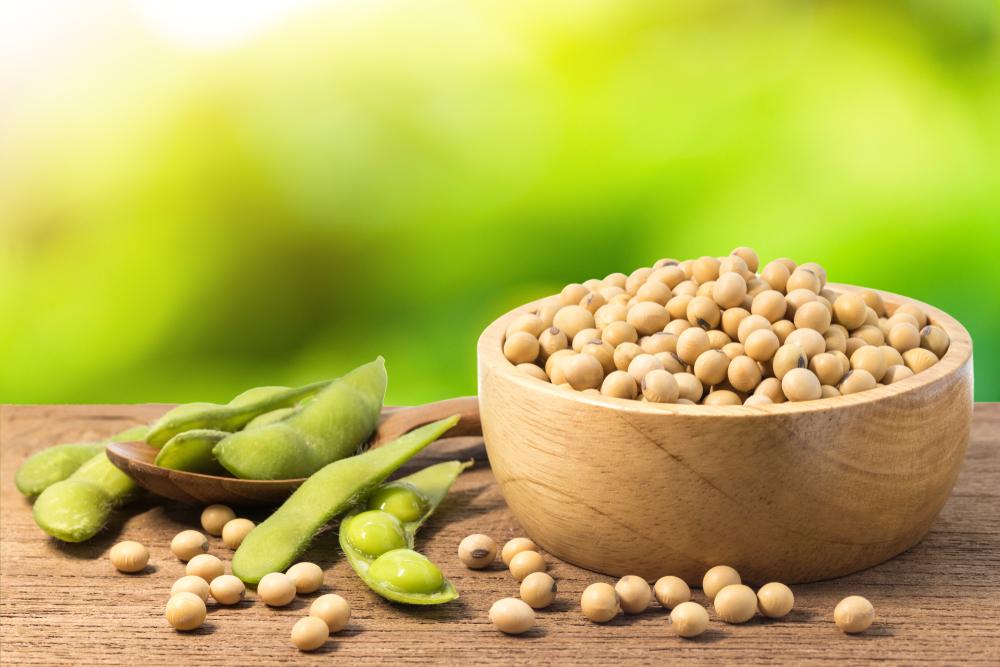 фасоль и чечевица белок