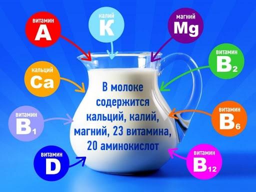 химический состав молока