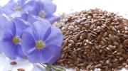 Чем так полезны семена льна