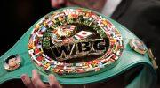 WBC не будут переносить конвенцию из Петербурга, Усик готовится победить Чисору